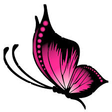 butterfly design free png photo images and clipart