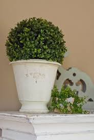 Mantel Topiaries - 103 best details urns images on pinterest garden urns gardens