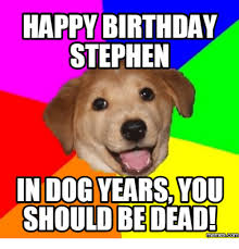 Stephen Dog Meme - happy birthday stephen in dog years you should be dead memes com