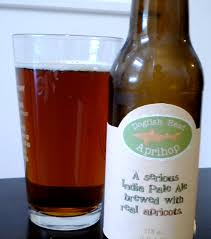 Dogfish Pumpkin Ale by Brewer Dogfish Head Tilting Suds