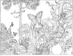 forest coloring pages jungle forest coloring pages for adults