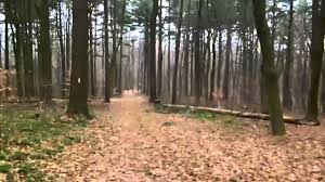Mohican State Park Campground Map Mohican State Park Oh Park U0026 Pack 9 Youtube