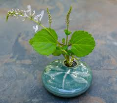 Ikebana Vase Ikebana Vase And Flowers Ginger Wroot