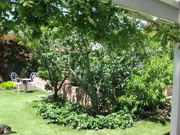 gardens houses a small cubtab home decor page interior design shew