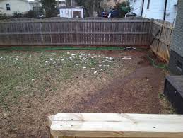 Backyard Walking Paths Unwanted Dog Paths U2014 Need Landscaping Solution