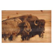 buffalo wood panel wall hanging