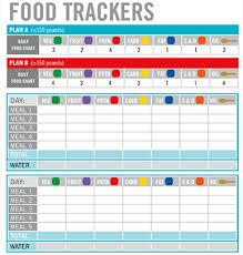 Diet Tracker Spreadsheet Insanity Max 30 Worksheet Downloads Beachbody Com