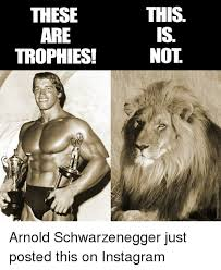 Arnold Schwarzenegger Memes - these are trophies this is not arnold schwarzenegger just posted