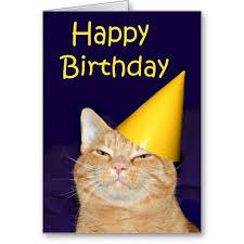 17 best cat birthday cards images on cat birthday