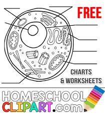 homeschool clipart