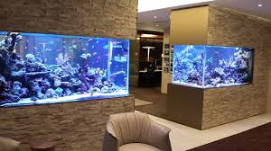 home aquarium 30 incredibly awesome ideas to beautify your home with aquariums