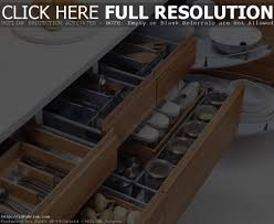 Software For Kitchen Cabinet Design Cabinet Kitchen Cabinets Design Kitchen Cabinet Design Ideas