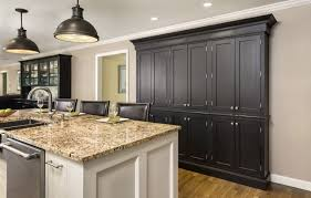Kitchen Cabinets For Free Intriguing Images Trendy Pantry Cabinet For Kitchen Free