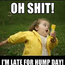 Meme Hump Day - happy hump day what people thinks and celebrate this boring day