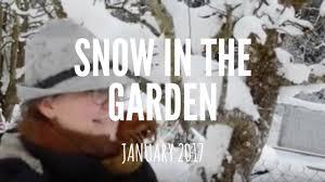 snow in the january 2017 vegetable garden winter gardening in