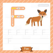 letter f uppercase fox animal tracing worksheet stock vector art