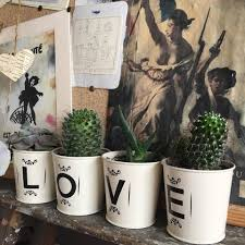 71 classy cactus interior decor to give your rooms a makeover