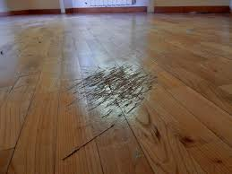 attractive scratches in hardwood floors part 1 dogscratches web