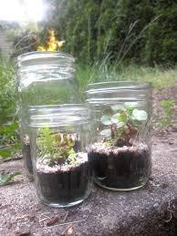 bridal shower favors diy mason jar terrariums half pint
