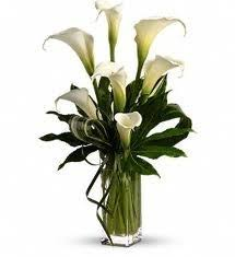 Calla Lily Bouquets A 2 Calla Lily Arrangement In Philadelphia Pa Carl Alan Floral