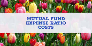 Mutual Fund Accountant How Much Are Mutual Fund Expense Ratio Costs Investormint