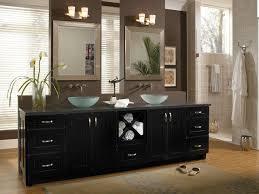 Black Bathroom Cabinet Cabinetry Sumner Maple Black Contemporary Bathroom