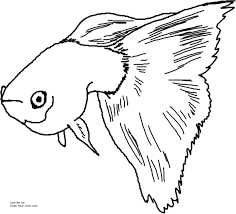index of printable coloring pages