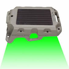 hog hunting lights for feeder wildgame innovations moonshine 2 hog feeder light predator solar