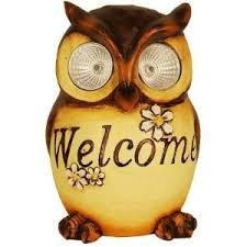 59 best bem vindo images on pinterest owls owl and owls decor