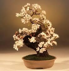 artificial cherry blossom small