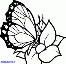 easy drawing of butterfly easy drawing butterfly how to draw a