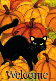 amazon com black cat in pumpkin patch halloween garden flag