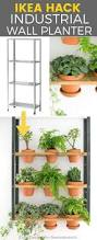unique indoor planters best 25 indoor planters ideas on pinterest indoor green plants