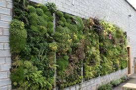 green everywhere diy vertical gardens homesthetics inspiring