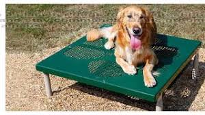 Dog Grooming Table For Sale Cheap Dog Grooming Table For Sale Find Dog Grooming Table For