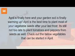 when should you start planting a vegetable garden youtube