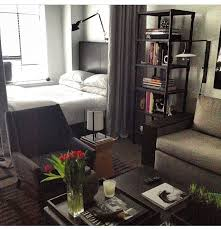 Studio Apartment Setup Ideas Stunning Decor For Studio Apartments Pictures Liltigertoo