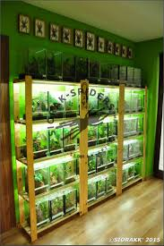 best 25 home aquarium ideas on pinterest amazing fish tanks