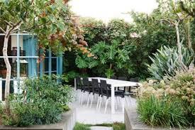 Midcentury Modern Landscaping - modern landscape archives better living socalbetter living socal