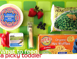 what to feed a picky toddler rookie moms