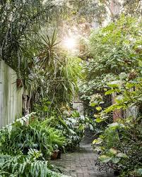 Secret Garden Wall by The Planthunter U2013 From Dunny Lane To Secret Garden