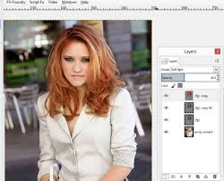 hair color put your picture absolute gimp