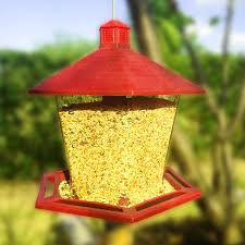 shop bird feeders at lowes com