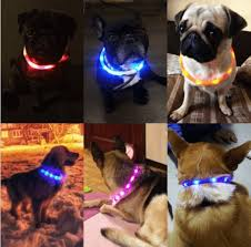 dog collar lights waterproof rechargeable waterproof led flashing light band night safety for
