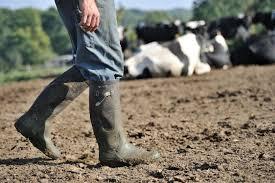 chambre agriculture yonne les paysans de l yonne réunis ce mardi pour tirer la sonnette d