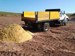 dump truck dump truck budding rocks
