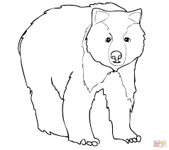 young grizzly bear coloring page free printable coloring pages