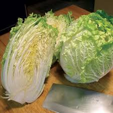 cabbage china cabbage china express cabbage