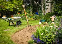 how to start a flower garden in 3 easy steps garden club