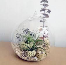 secert garden terrarium u2014 robincharlotte